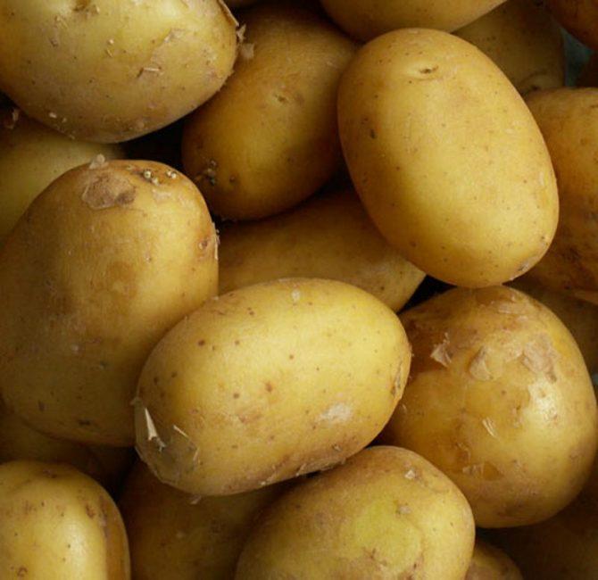 Клубни картофеля Баллада.