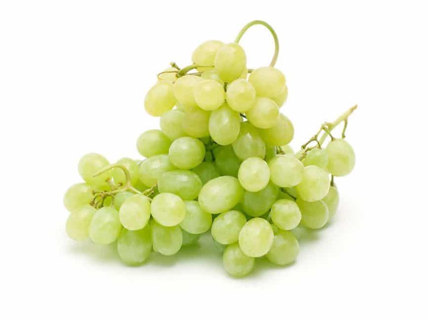 Кишмиш сорт винограда