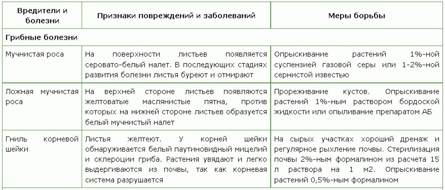 таблица Грибные болезни дельфинума