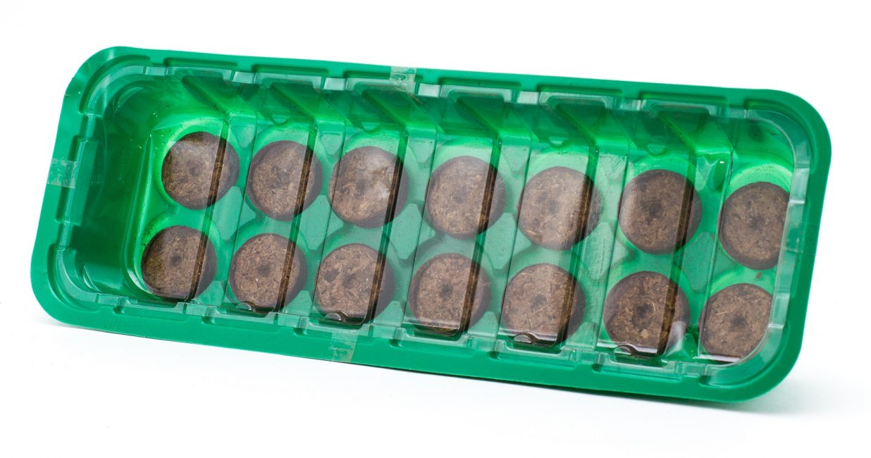 Мини-парник для рассады, выращиваемой с применением таблеток