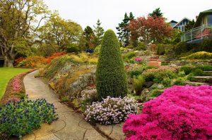 Каталог из 23 растений для альпийской горки: кусочек Швейцарии в саду (80+ Фото & Видео) | +Схемы