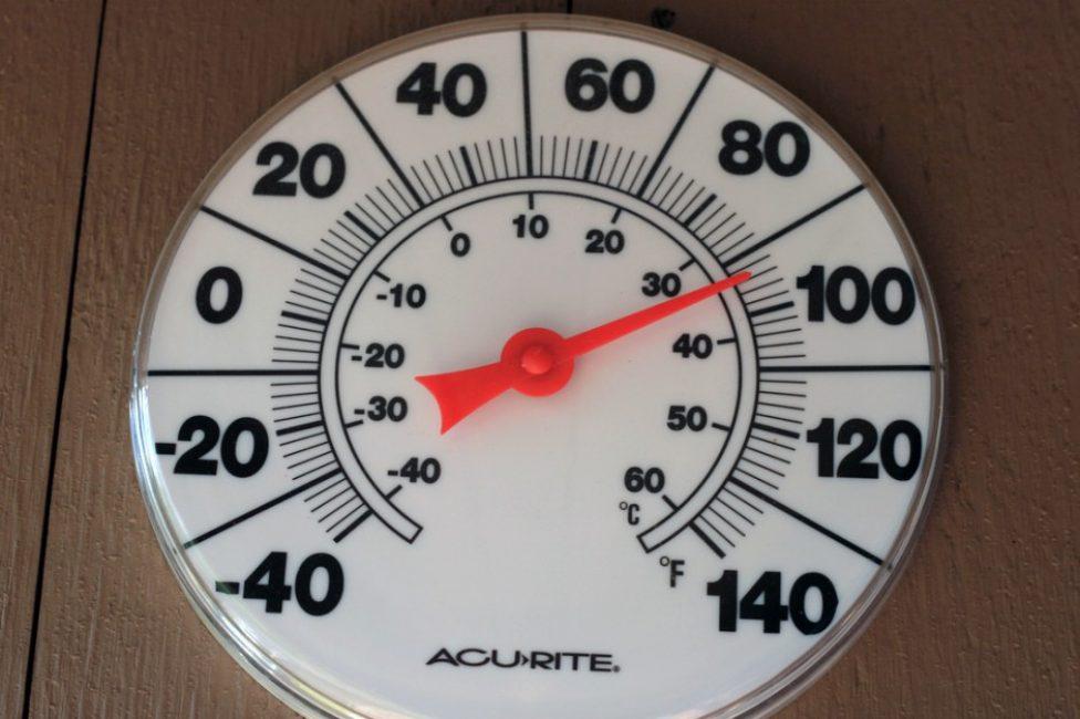 В летнее время оптимальной температурой для колеуса является диапазон от +20°С до +28°С.