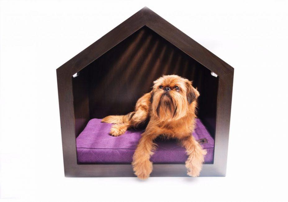Удобная будка для квартирной собаки