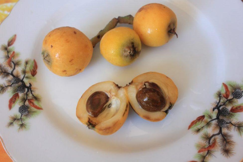 В плодах мушмулы обычно 2-3 косточки