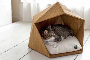 Строим дом для кошки своими руками. Интересные идеи и пошаговые инструкции: из фанеры, картонных коробок, ткани. Чертежи с размерами (120+ Фото & Видео)