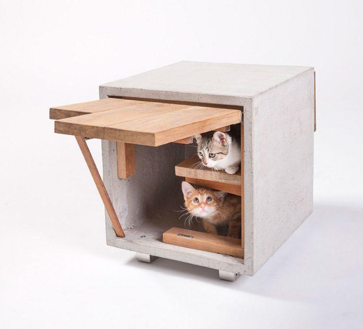 Жилище для двух котов