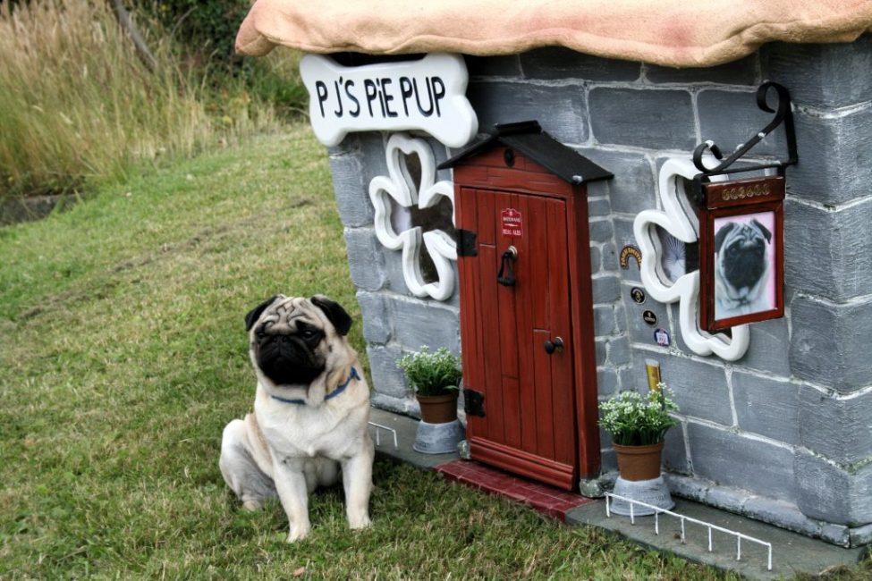 Каменная будка для мопса