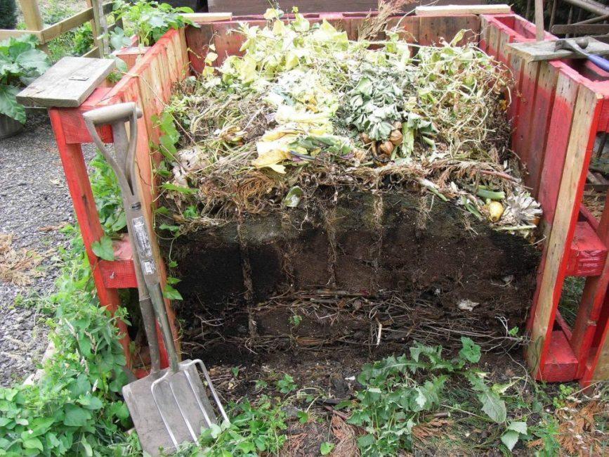 Компост – отличное органическое удобрение