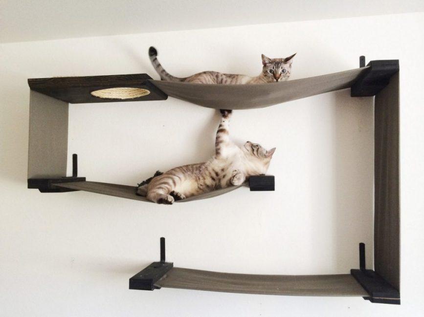 Лежаки можно расположить прямо на стенах