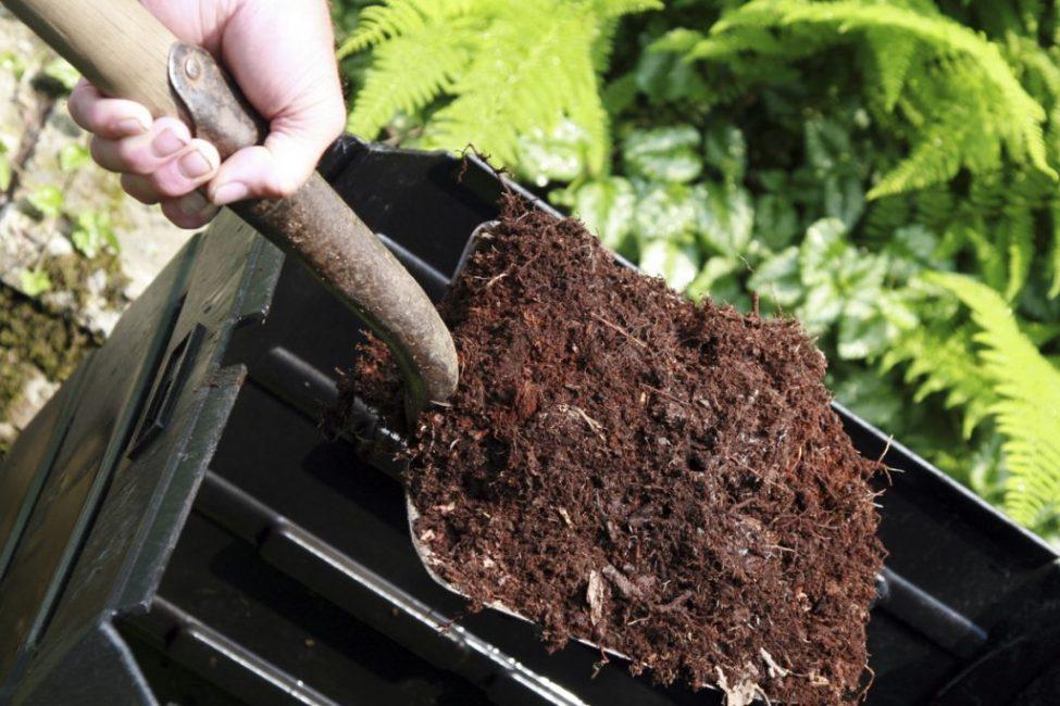 Самое известное органическое удобрение в России