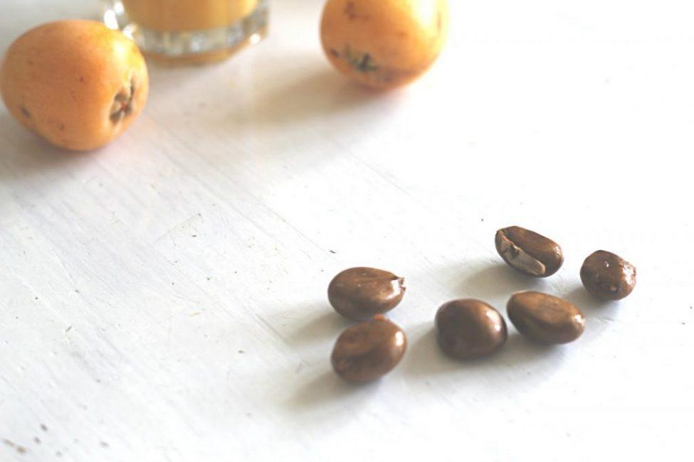 Семена чишкового дерева в сыром виде содержат ядовитые вещества