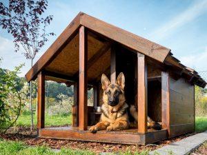 Как сделать будку для собаки своими руками: устройство жилища во дворе и в квартире. Чертежи, размеры и оригинальные идеи (55+ Фото & Видео) +Отзывы