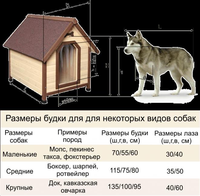 Средние размеры будки для разных собак
