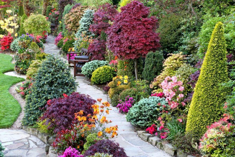 Красивоцветущие кустарники в ландшафтном дизайне