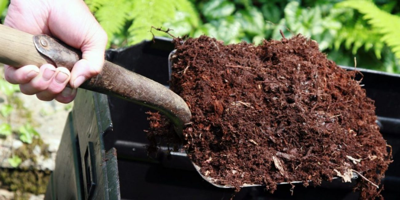 Обработка почвы начинается с внесения перегноя