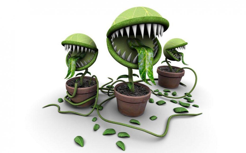 Внешний вид некоторых растений может вызывать страх у ребенка