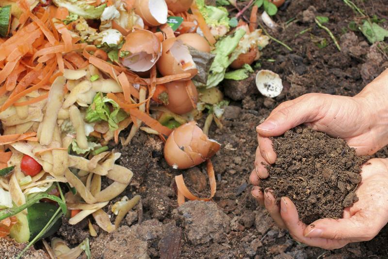 Из остатков растительных отходов можно получить превосходное удобрение