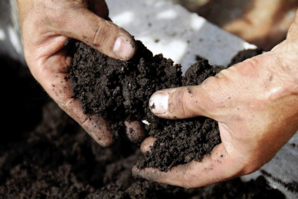 Улучшение тяжелой почвы