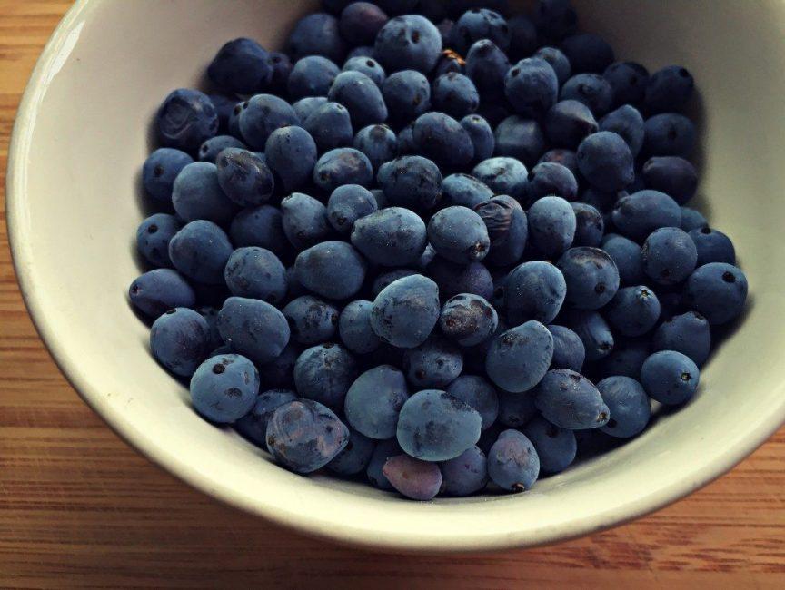 Из ягод магонии готовят вкусное варенье
