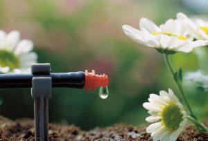 Устройство капельного полива в теплице своими руками: из бочки, пластиковой бутылки и даже автоматической системы. Для томатов и других культур (Фото & Видео)+Отзывы