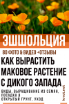 Эшшольция – маковое растение с Дикого Запада: описание, виды, выращивание из семян, посадка в открытый грунт, уход (80+Фото & Видео) +Отзывы