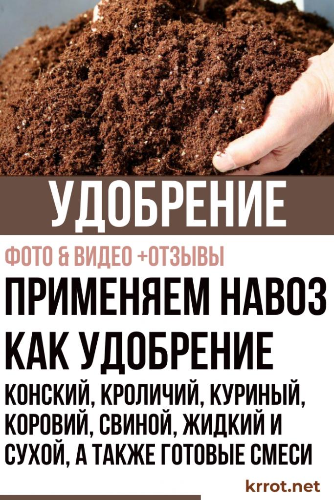 удобрения хорошие Primenyaem-navoz-kak-udobrenie-683x1024