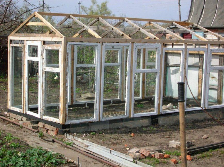 Старые оконные рамы - популярный материал для парников и теплиц