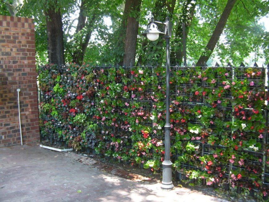 «Зеленая» стена из пластиковых ящиков
