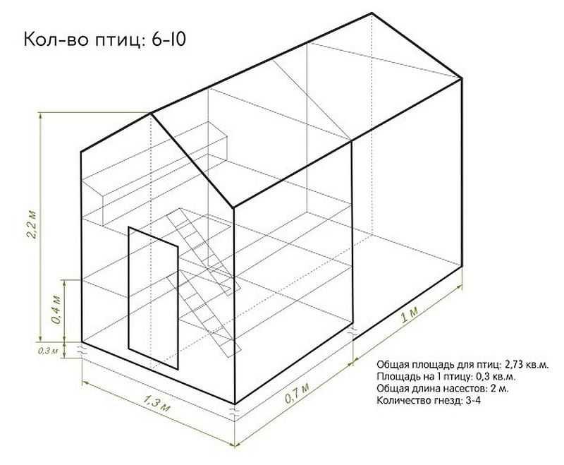 Схематичный чертеж курятника на 10 кур