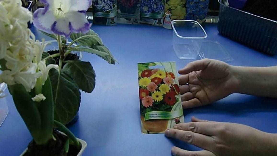 Семена африканского экзота
