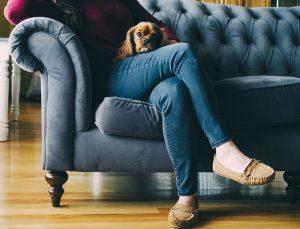 Диваны хорошего качества: как выбрать универсальную модель для отдыха и сна. Популярные производители +Отзывы