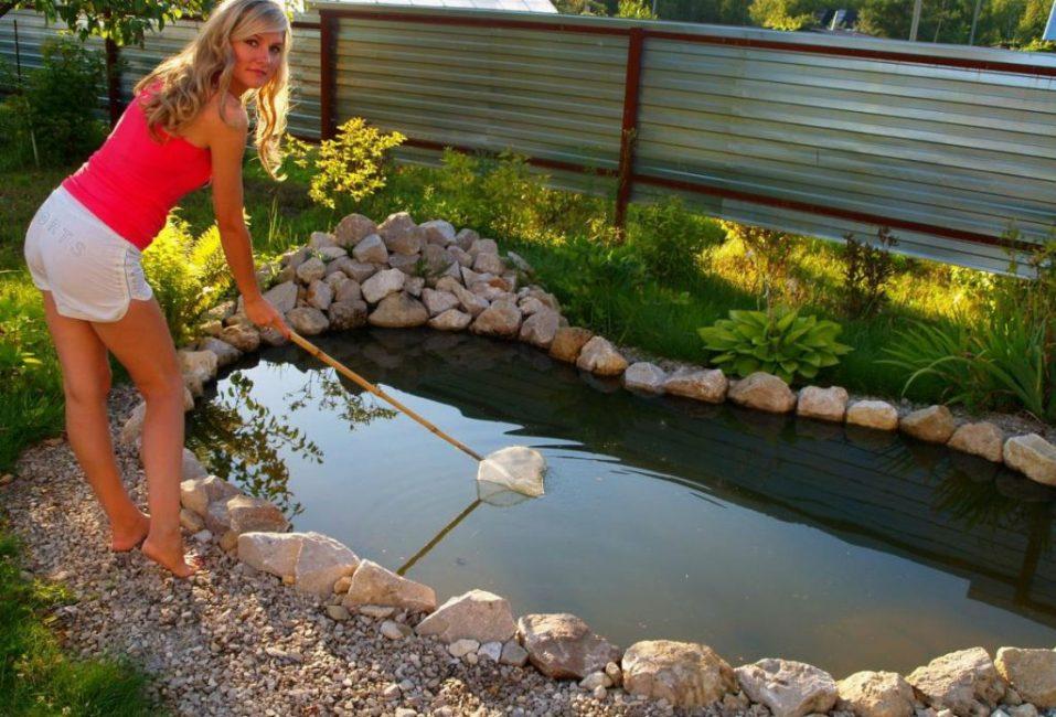 Своевременный уход и забота предотвратит цветение воды