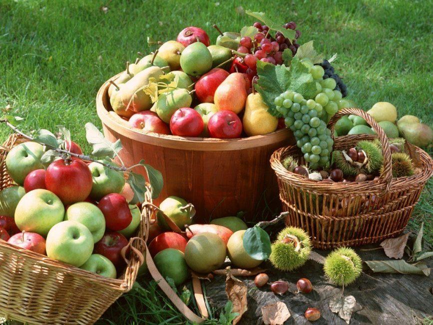 Собранные фрукты