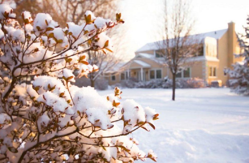 Февральский снег