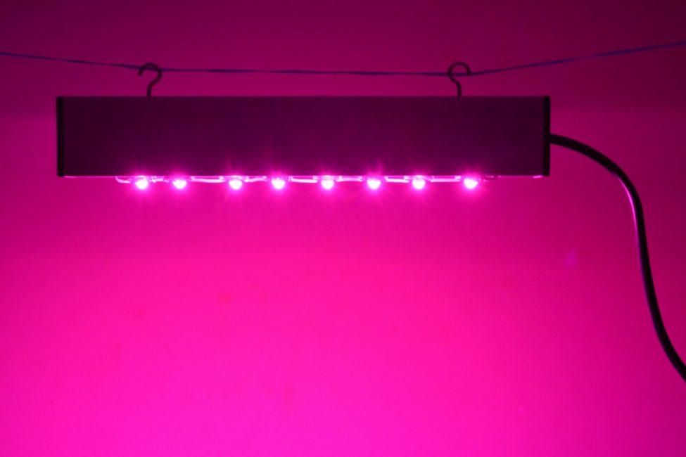 Линейная конфигурация светильника для растений Персей от «НПО ФИТОВАТТ»