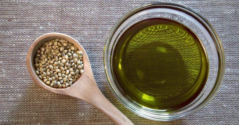 Масло из семян конопли: польза и вред