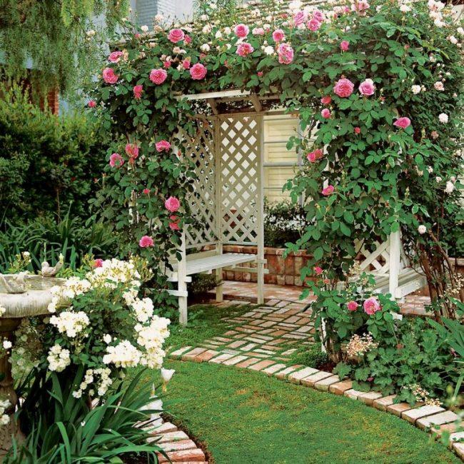 Вьющиеся розы создают приятное и красивое затенение