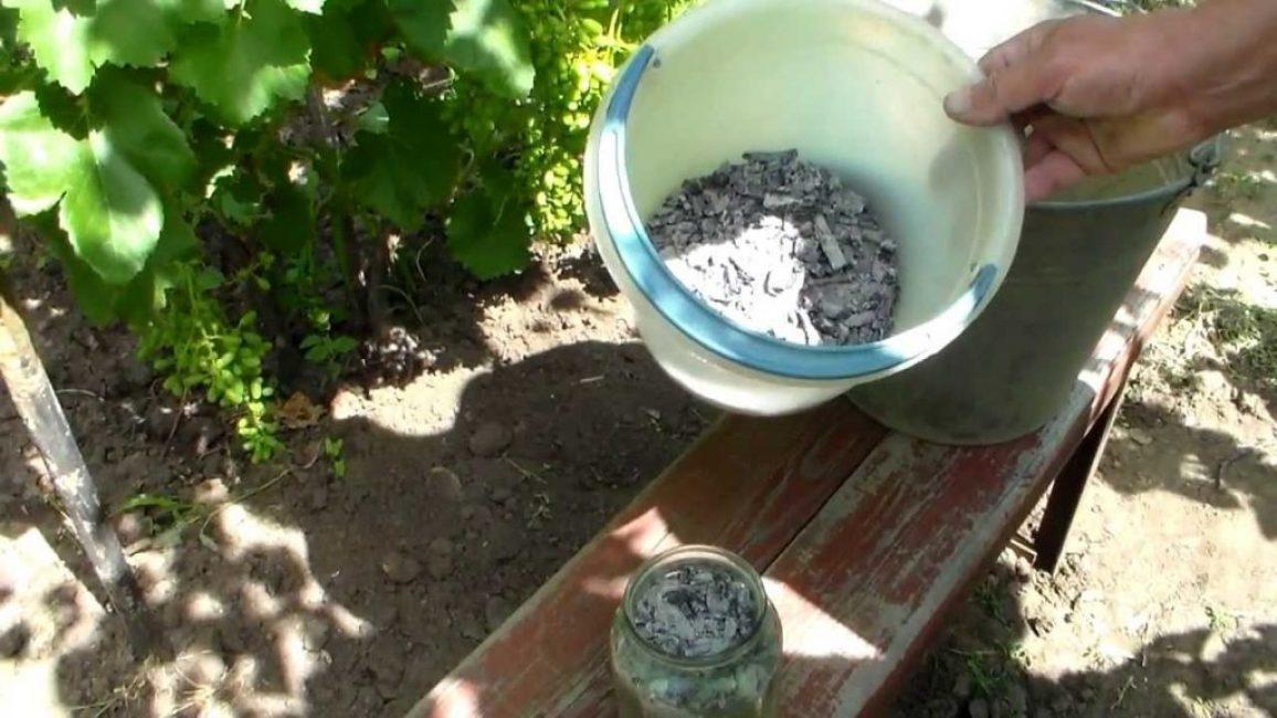 Древесная зола содержит большинство элементов, полезных растений