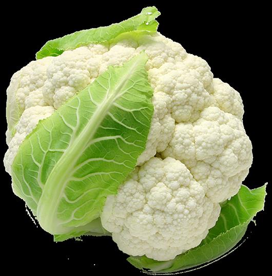 Какие овощи можно сажать под зиму? ТОП-8 самых подходящих растений и лучшие их сорта | (Фото & Видео) +Отзывы