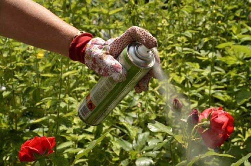 Применение заводских химических средств в виде аэрозоля