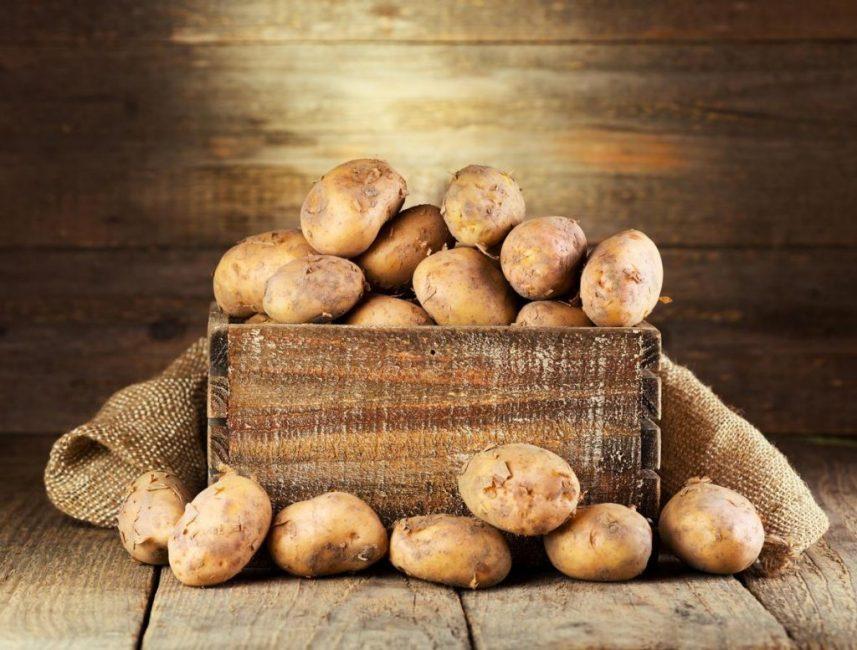 Хранение картофельных клубней