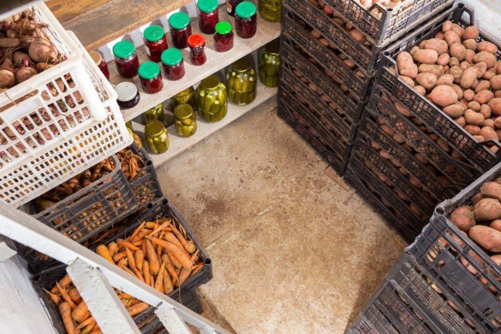 Морковь в подвальном помещении
