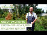 [ВИДЕО] Как правильно подготовить плодовые деревья к зиме