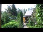 [ВИДЕО] Волшебный сад необычных растений