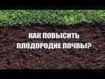 [ВИДЕО] Органические удобрения для сада и огород