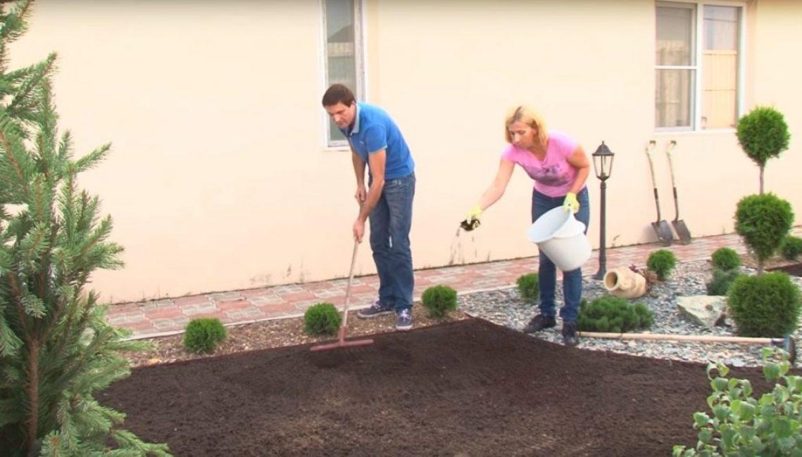Внесение удобрений и начальное выравнивание почвы для будущего газона