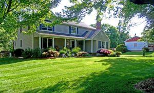 Как правильно сеять газон своими руками: простая пошаговая инструкция