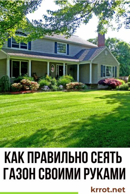 Как правильно сеять газон своими руками