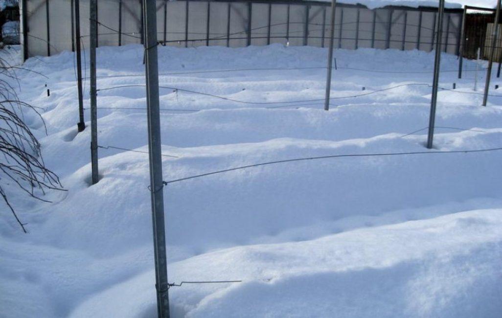 Снег в качестве укрытия