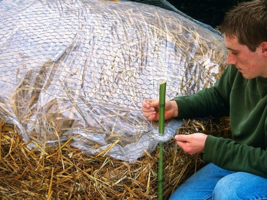 Использование плёнки при укрытии соломой